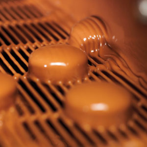 Valrhona Jivara Milk 41% Milk Chocolate Block  #189