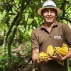 Republica del Cacao Amazonia 75% Dark Chocolate 5.5 lbs